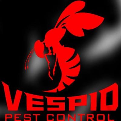 Rat Pest Control San Antonio Tx
