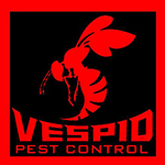 Affordable Houston and San Antonio Tx Pest Control